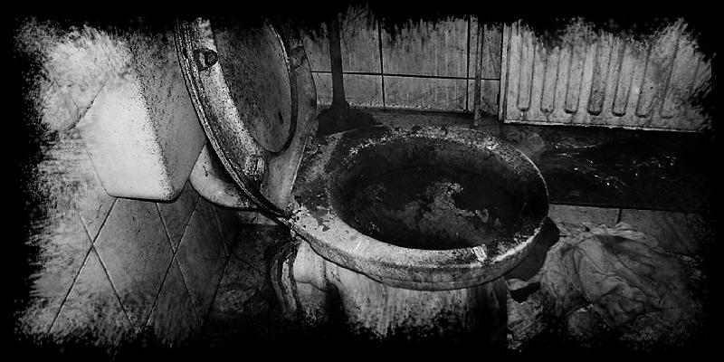 Ich bin der Schließer ohne Schlüssel und ein Seiler auf der Schüssel, tu ins Vollbad urinieren, esse Fleisch von toten Tieren