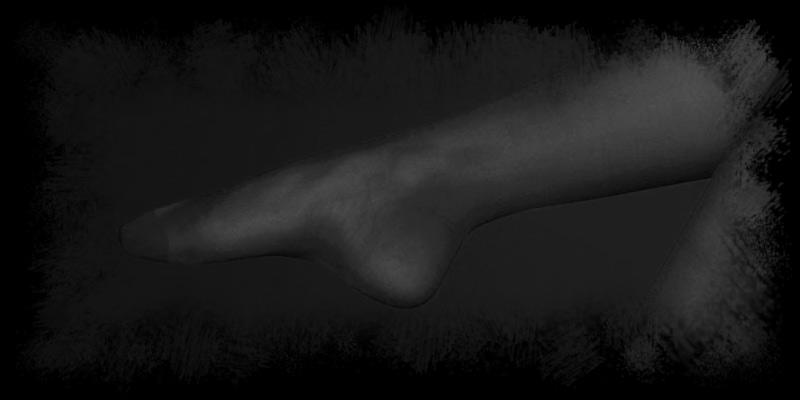 gofmanns-strumpfhose